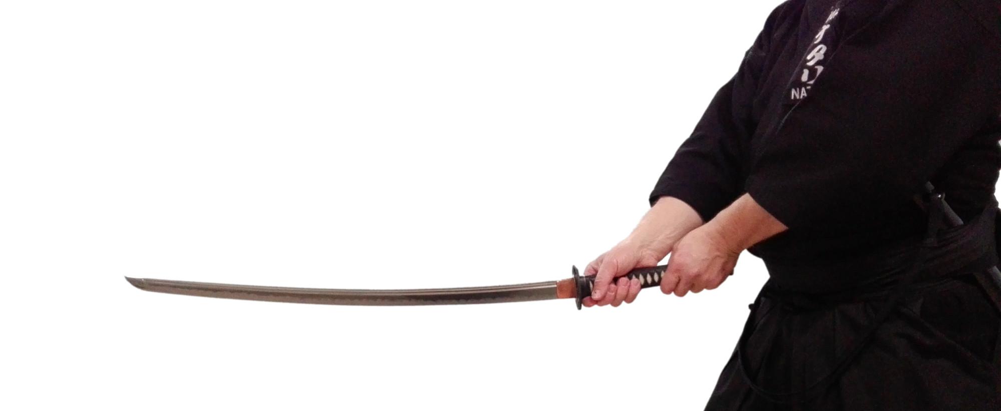Akitsukai Lucca asd - iaido