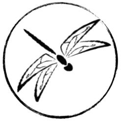 Akitsukai Lucca asd – iaido